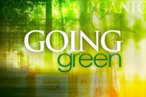 Going Green: 12 Simple Steps for 2012