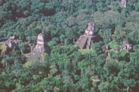 New Light on the Ancient Maya; Mayan