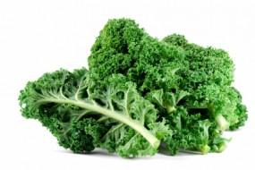 10 Vegan Sources of Protein