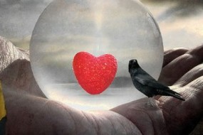 6 Keys to Rebooting Your Heart Drive