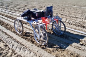 Can Weed-Seeking Robots Replace Planet-Killing Herbicides?