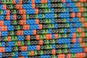 Exclusive Interview With Complete Genomics CEO — The Future Of Genetics-Based Medicine?
