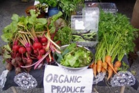 Stanford Scientists Shockingly Reckless on Health Risk And Organics