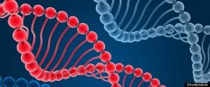 Human Genome Encyclopedia, ENCODE, Reveals Complexities Of DNA, Genes