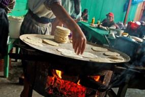 Foods of the Maya World