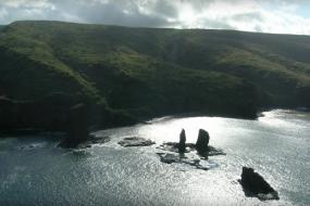 Ellison plans to experiment on his Hawaiian island