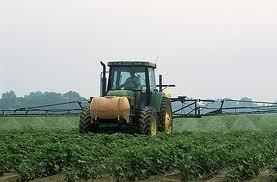 Now More Than Ever Pesticides: