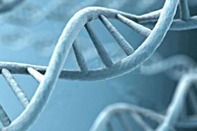Genetics, Epigenetics, and Destiny