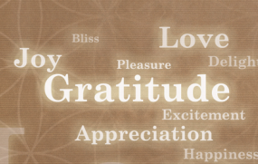 The First Secret of Joy, Continued: Gratitude Is the Joy Switch
