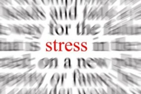 The Conscious Lifestyle: Facing Your Stress