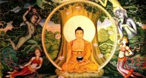 What the Buddha Might Say to Oprah Awaken