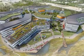 Google-office-park awaken