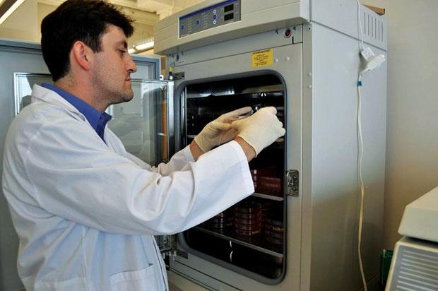 Lab-grown-meat-awaken