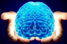 Brain-awaken