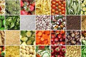 discovering-natures-wisdom-through-food-awaken