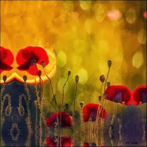 mystic_poppies-awaken