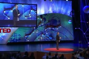 TED--Master Thief-Awaken