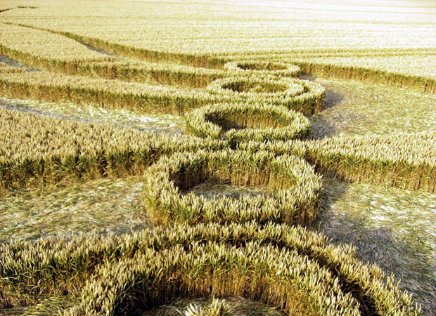 Crop-Circle-1-Awaken