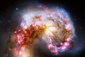 music-natures-universal-language-awaken