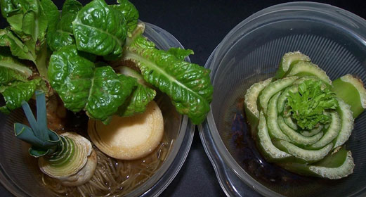 vegetables-herbs-you-can-eat-once-and-regrow-forever-awaken