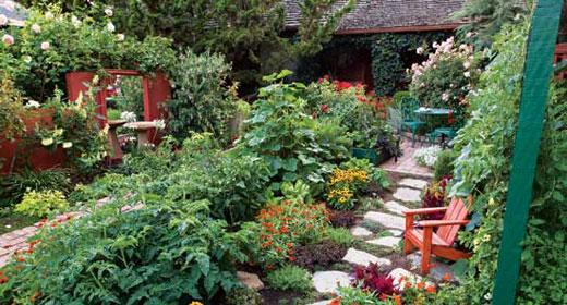 Bench In Beautiful Garden Awaken