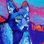 blue-coyote-detail-jeff-ham-awaken