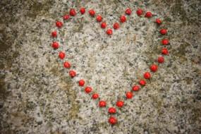 romantic_heart_from_love_seeds-awaken