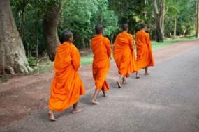 saffron-robes-awaken