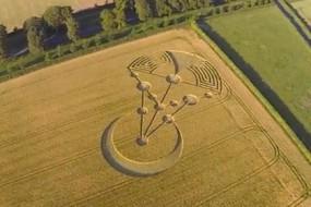 Spectacular-Crop-Circle-at-Badbury-Rings-Awaken