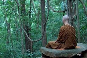 Meditation-Awaken