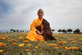 Buddhist-Wisdom-awaken