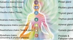 Chakras-Are-Centers-Of-Consciousness-awaken