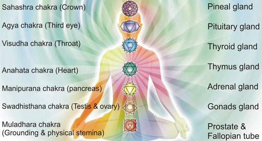 awakening the chakras the seven energy centers in your daily life