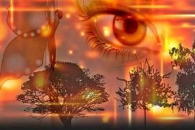 Shamanism-Awaken