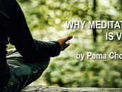 Why-Meditation-is-Vital-Awaken