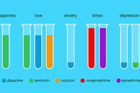 generosity-hormone-emotion-index-Awaken