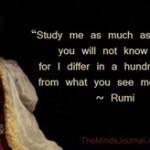 Maulana-Jalal-ud-din-Rumi-Quotes-awaken