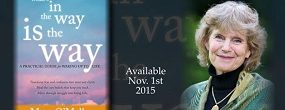 """Mary-O'Malley-with-""""What's-In-The-Way-IS-The-Way""""-520-520x198"""