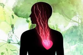 head-heart-guidance_feature-Awaken