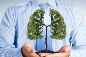 breath-your-natural-healing-tool-awaken
