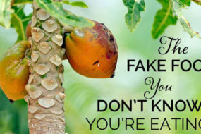 fake-food-papaya-awaken