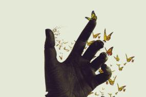 transformation-human-awaken