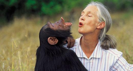 Jane-Goodall-awaken