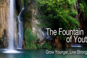 fountain-of-youth-awaken