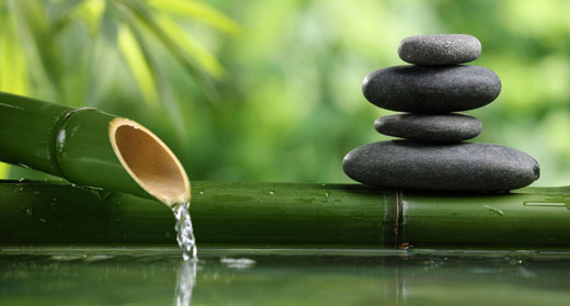 Zen-awaken-awaken