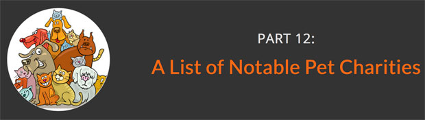 A-List-of-Notable-Pet-Charities-620