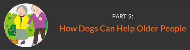 How-Dogs-Can-Help-Older-People-awaken