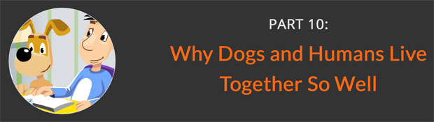 Why-Dogs-and-Humans-Live-Together-So-Well-awaken-Why-Dogs-and-Humans-Live-Together-So-Well-awaken