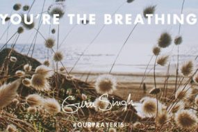 Your-the-Breathing-awaken