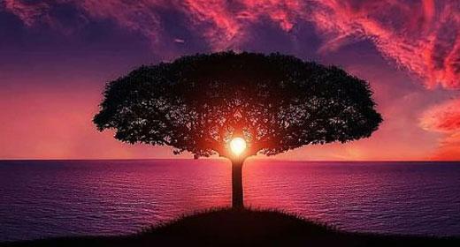 spiritual-awakening-awaken